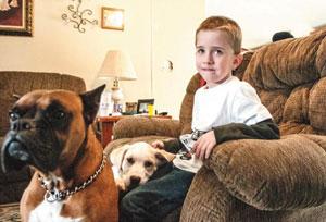 ребенок с собаками