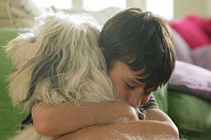 любовь к домашнему животному