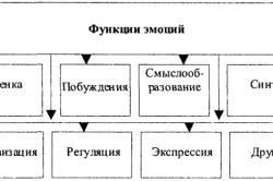 Функции эмоций