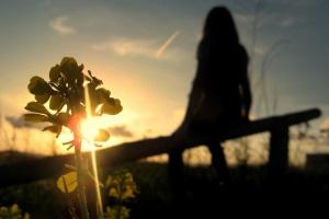 радость солнечного дня