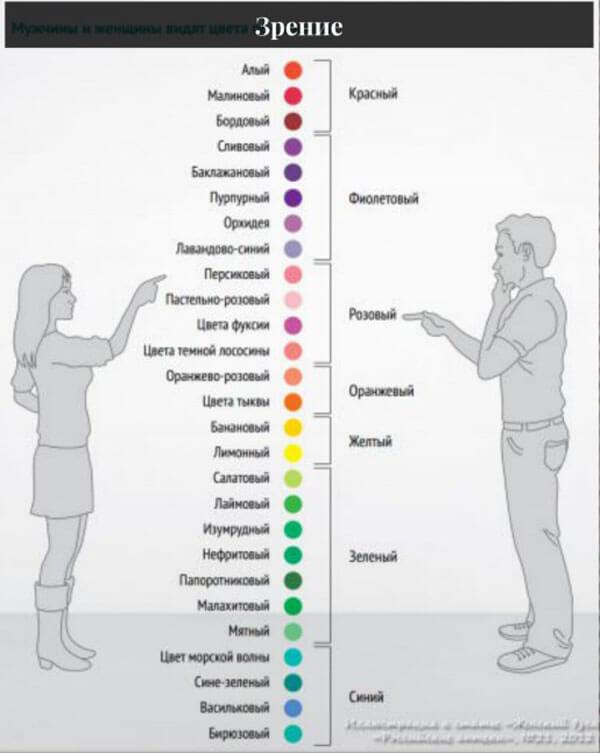 Оттенки цвета для мужчины и женщины