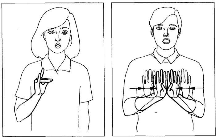 Жестовая речь
