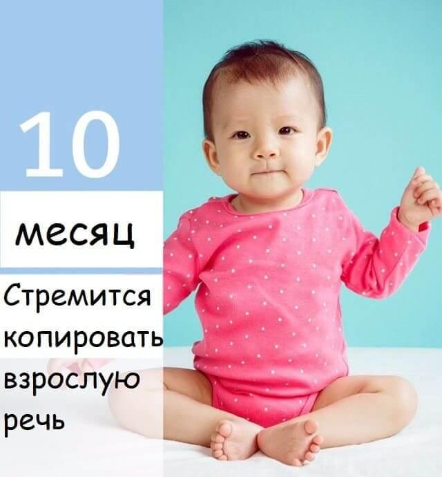 10mesachev