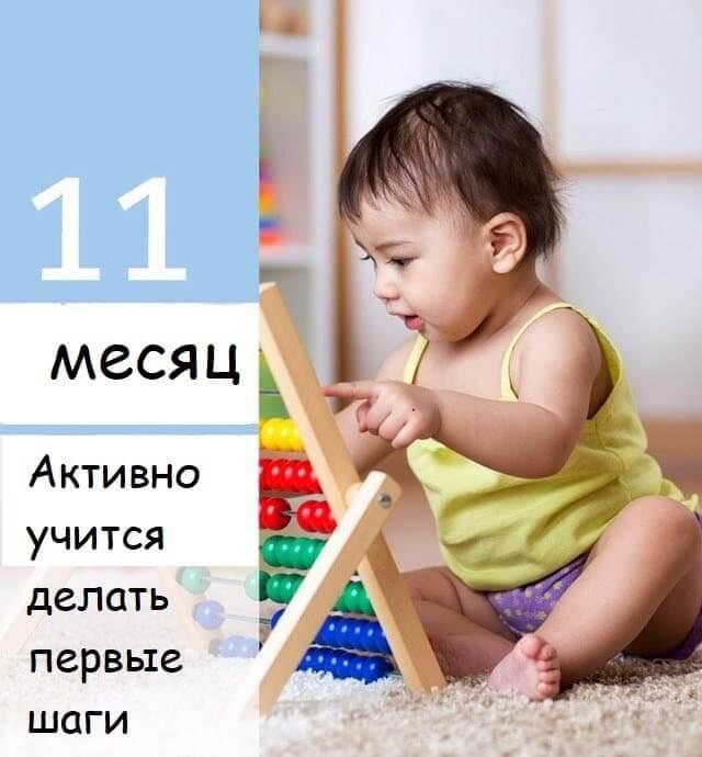 11mesachev