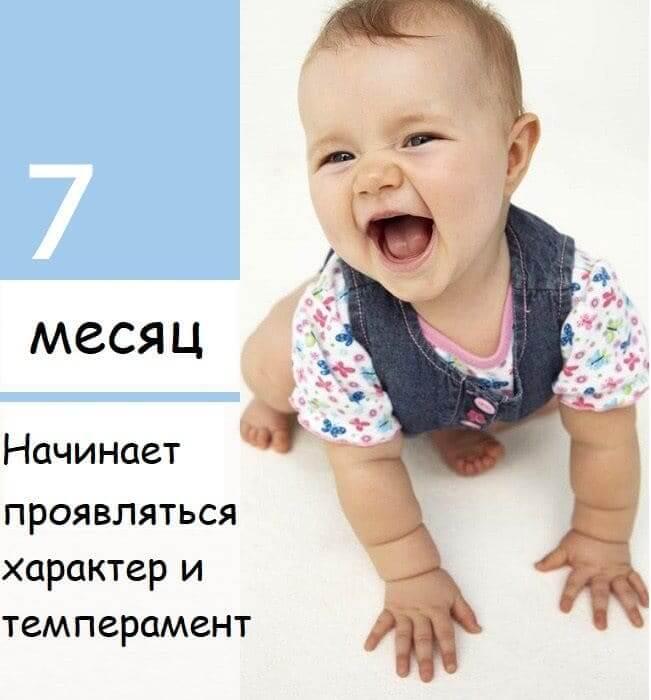 7mesachev
