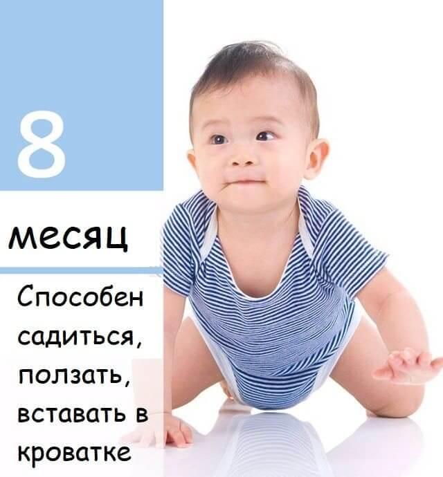 8mesachev